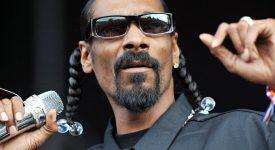 ICO Craze. Рэпер Snoop Dogg тоже в деле.