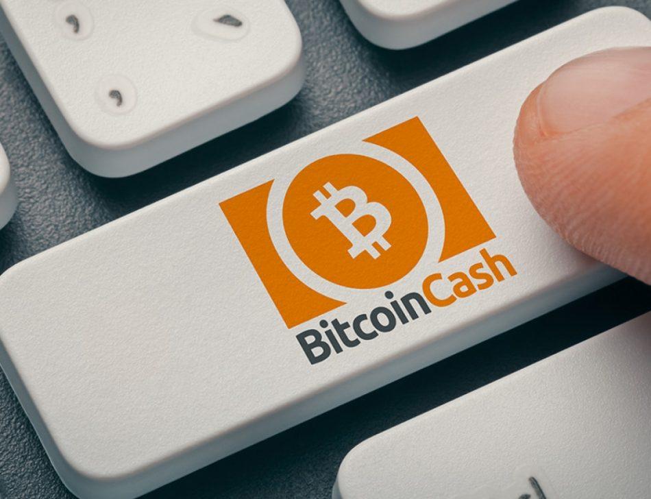 bitcoin cash добавлен на bitpanda