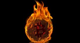 Эксперт предсказал, что биткоин сможет добраться до 50000 долларов