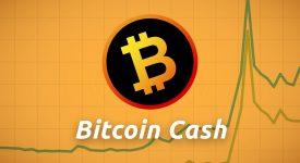 Bitcoin Cash Брайан Келли