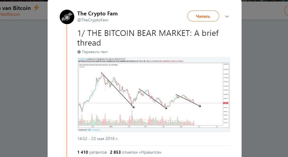 все аналитики говорили о медвежьем тренде на крипторынке