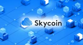 Skycoin обвинили в мошенничестве