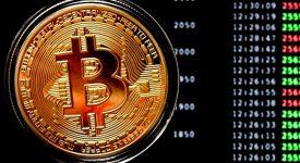 Главная криптомонета взлетела до 8000 долларов