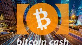 Интерес к Bitcoin Cash снижается
