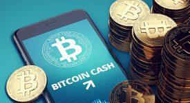 GMO отказался майнить Bitcoin Cash. Как это повлияет на курс BCH?