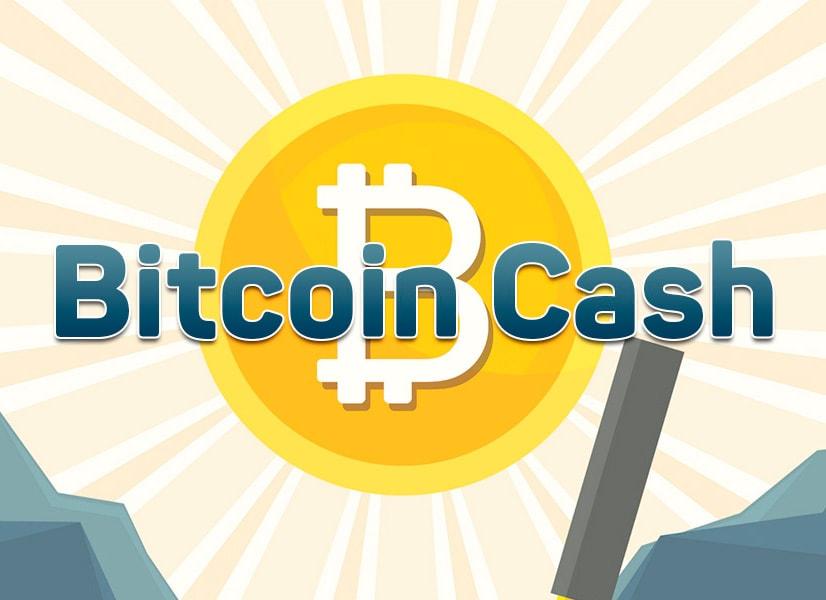 $6719.42 0.0415 BTC Противостояние разработчиков может привести к хардфорку Bitcoin Cash