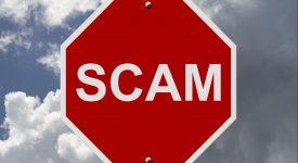 Скам-криптопроект заработал 22 млн долларов