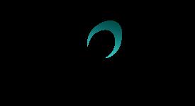 Obsidian (ODN) - Снэпшот для бесплатного распределения криптовалюты