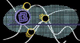 BitBay (BAY) — Запуск Dynamic Peg