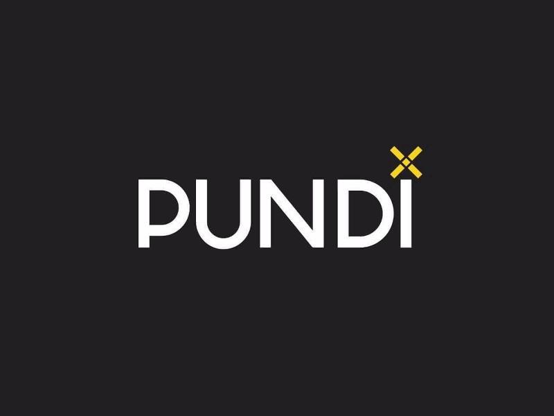 Pundi X (NPXS) - Снимок для ежемесячного распространения токенов