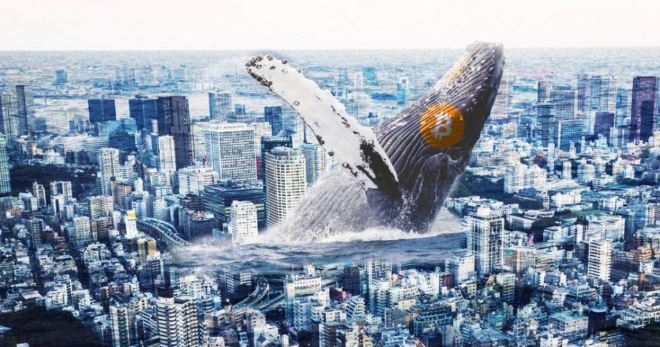 Когда «киты» захватят крипторынок