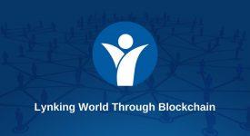 Lynked.World получил 5 млн долларов в качестве поддержки от институциональных фондов, несмотря на спад на рынке