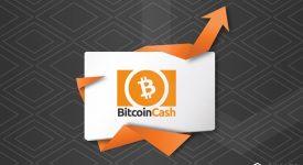 Bitcoin Cash демонстрирует уверенный рост на фоне грядущего хардфорка