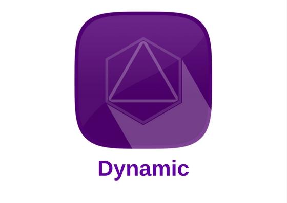 Dynamic (DYN) — Выпуск PrivateShare