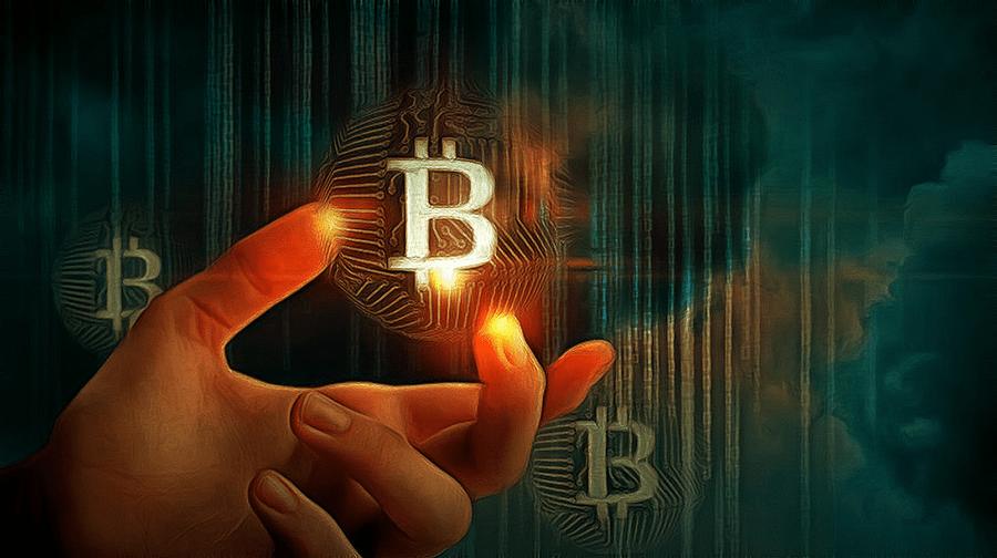 Университет Тима Дрейпера запустил новую программу для криптостартапов