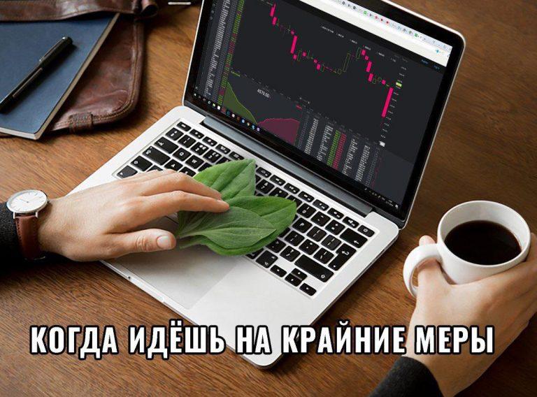 мемы крипта