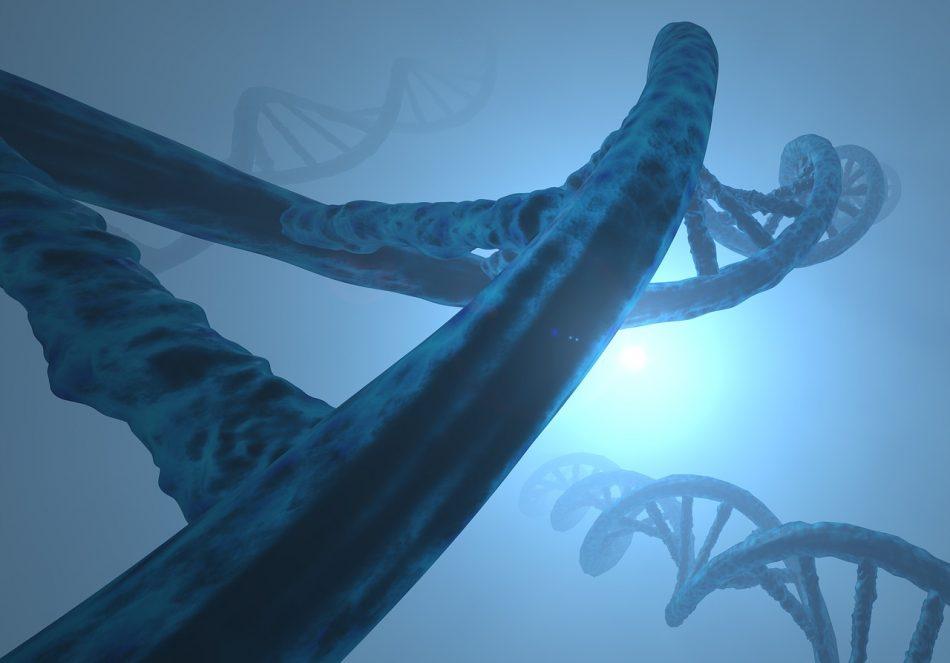 Более 400 мутаций найдено в геноме, из-за которых появляется шизофрения