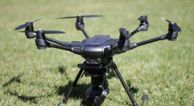 """Для дрона создали """"ноги"""", которые он используется, чтобы закрепляться на ветках"""