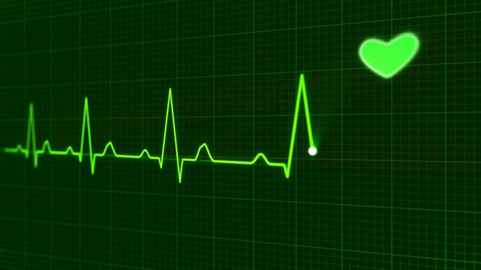 Физиологи рассказали, как создать бюджетный оптический кардиограф