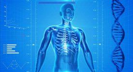 Создатель электронной системы для «Искандера» напечатает костные имплантаты