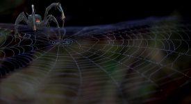 Робот-паук сможет перемещать грузы и карабкаться по горам