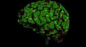 Парализованные люди смогут дистанционно управлять техникой благодаря устройству в сосудах мозга