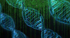 Для удаления больших фрагментов ДНК ученые разработали новую технологию