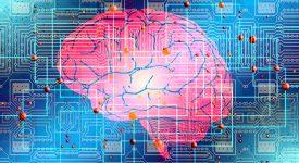 Познавать мир нейронная сеть будет с помощью глаз и тела