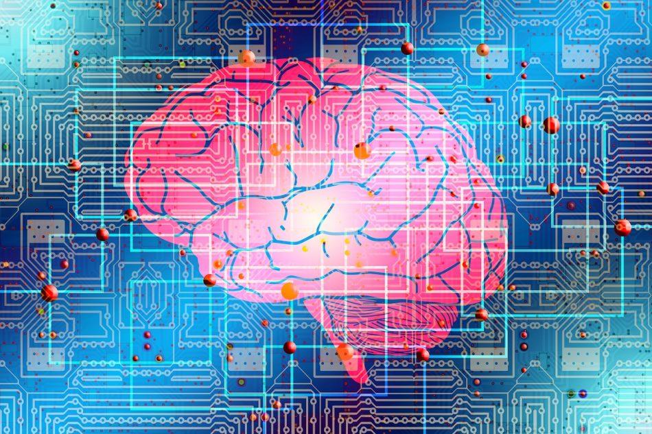 Ученые Илона Маска планируют вживлять в человеческий мозг свои микрочипы