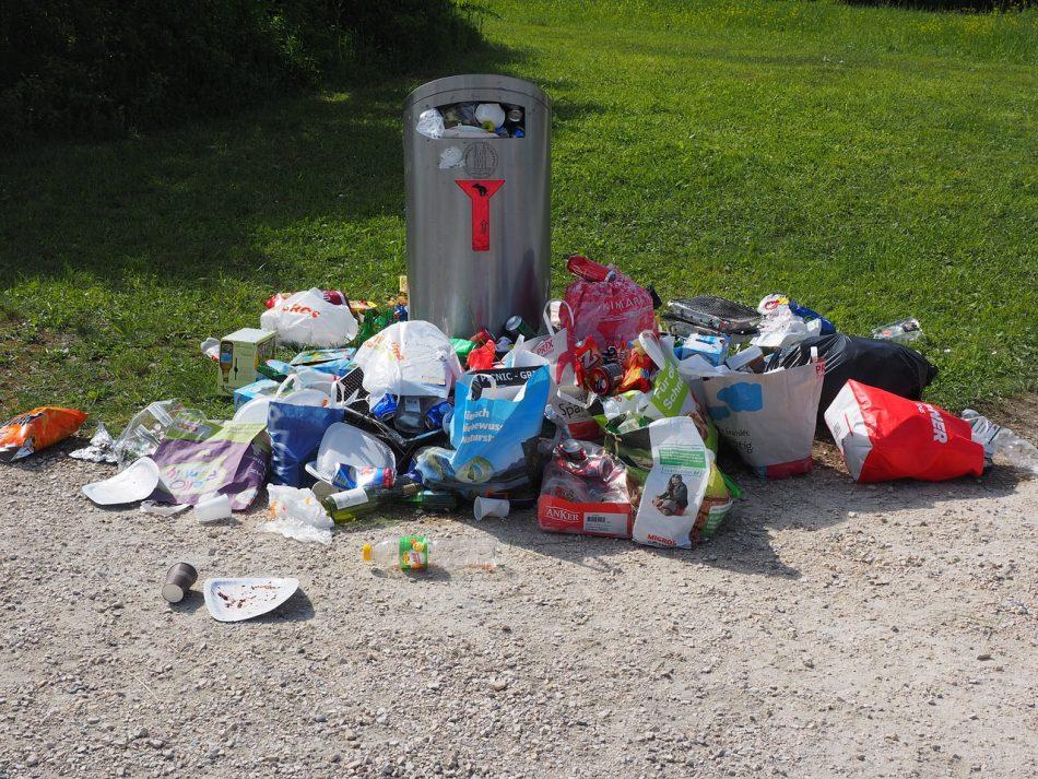 В Подмосковье ученый работает над созданием устройства для сортировки мусора