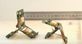 В Швейцарии инженеры создали роботов-муравьев, находящихся под управлением коллективного интеллекта