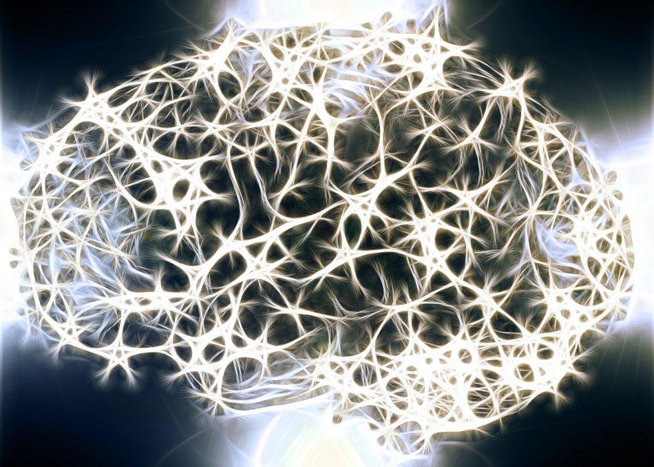 Воспоминания удастся хранить в микрочипе, имитирующем работу мозга