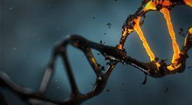 Ученые смогут находить мутации с помощью искусственного интеллекта