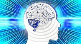 Мозг излучает мысли